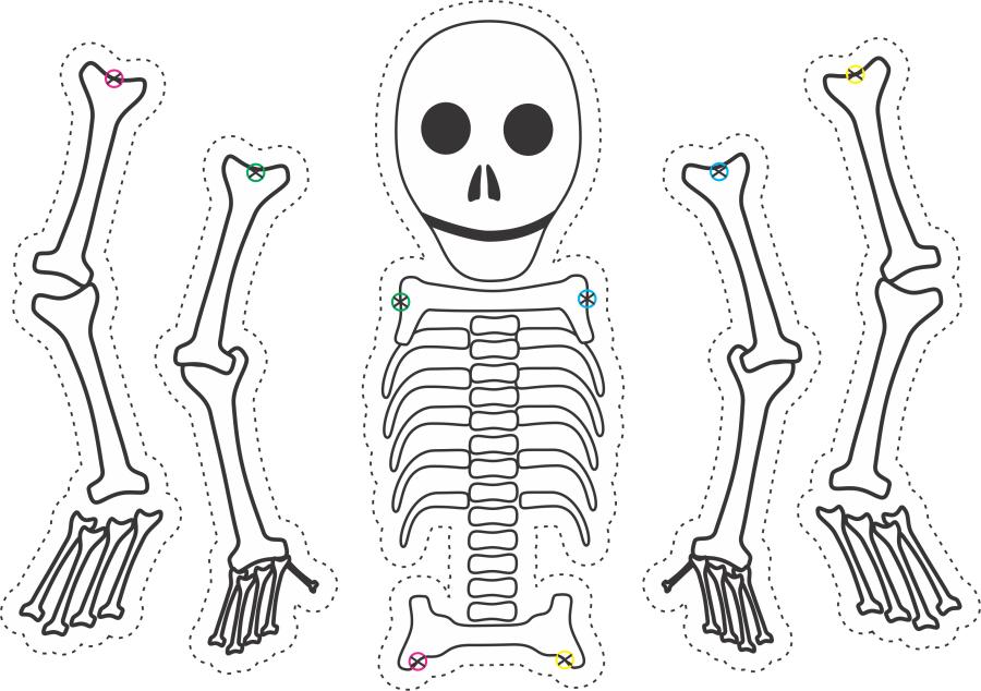 skeleton-craft-for-kids-2